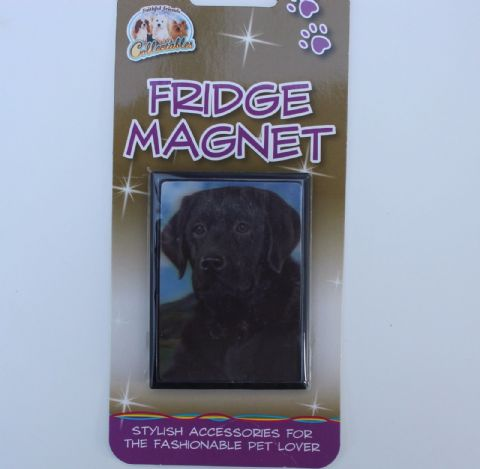 Black Labrador 3D fridge magnet